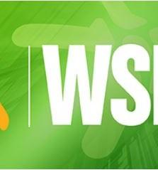 WSIS-10